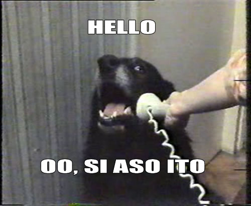 Hello? Oo, si Aso ito.